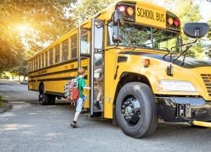 Significado de Sonhar com ônibus Tipos