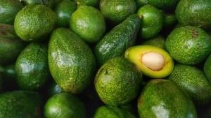 Sonhar com muitos abacates